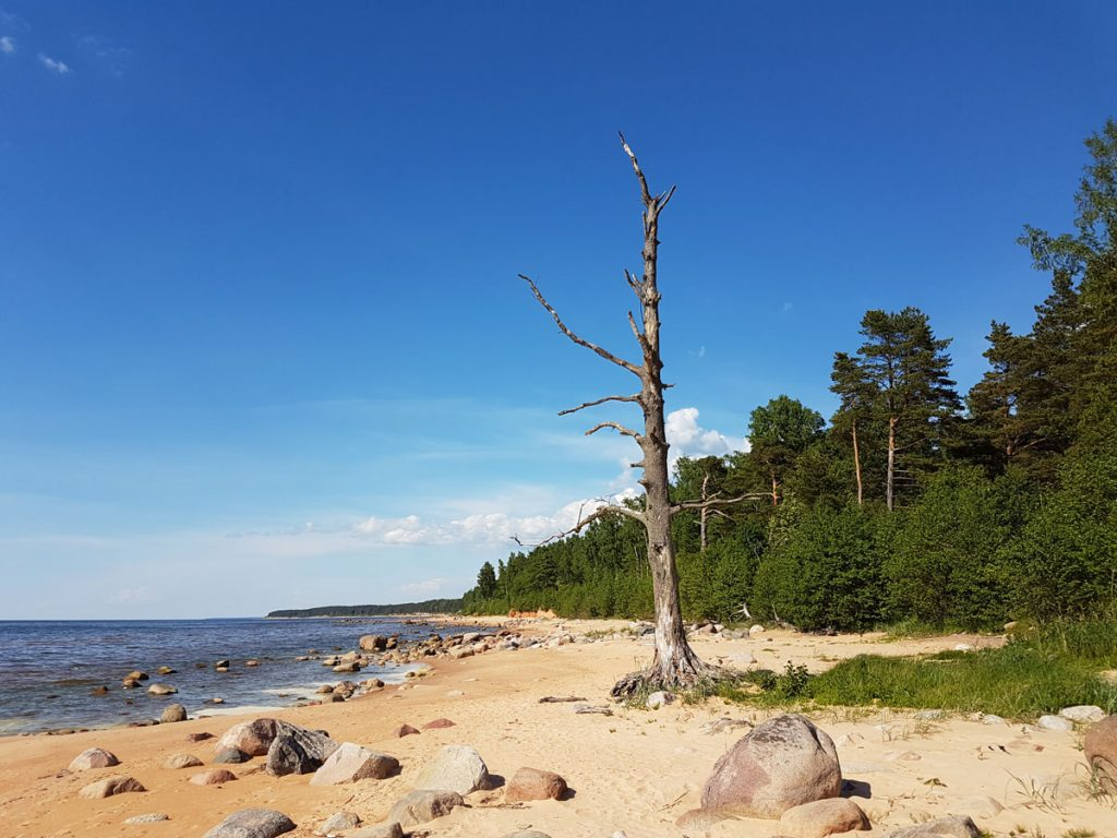 Traveling to Latvia _ secluded beach