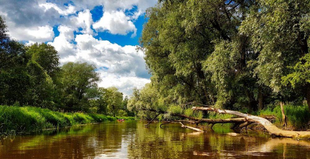 Canoeing in Ruja river _ Rolands Ratfelders