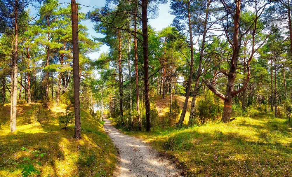 Hiking in Latvia _ Escaperies