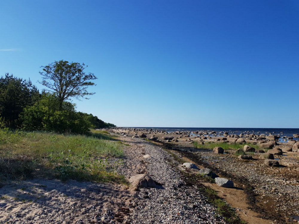 Beach hiking _ quiet beach holidays _ Latvia _ Kaltene
