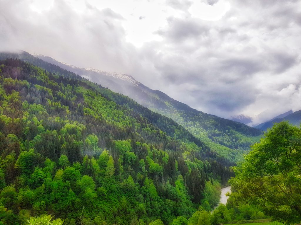 Travel to Gerogia _ Forested hills in Svaneti Region _ Escaperies
