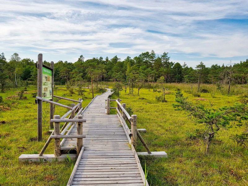 Places to visit in Latvia_Slitere National park_Escaperies
